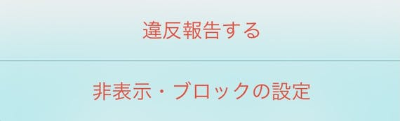 Pairs_違反報告・通報画面